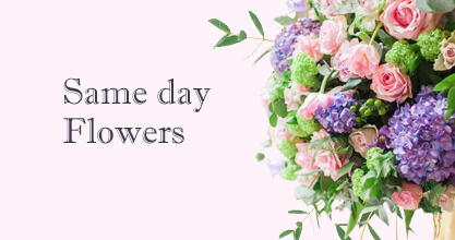 Same day Flowers Bromley